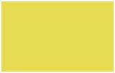 5b9-toyota-dynamic-yellow