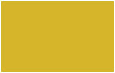 y13-toyota-yellow